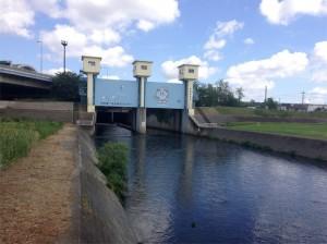 水再生センター バス釣り