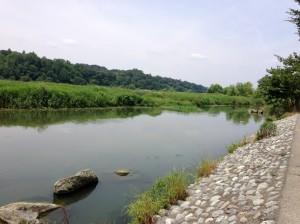 多摩川 バス釣り