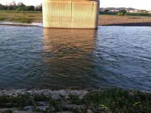 多摩川水再生4