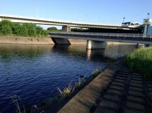 多摩川水再生2