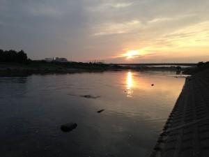 多摩川稲城大橋2