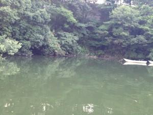 相模湖2014年7月1