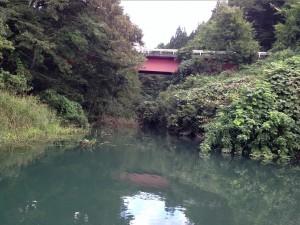相模湖バス釣り9月2