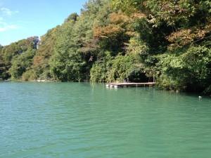 相模湖バス釣り10月23