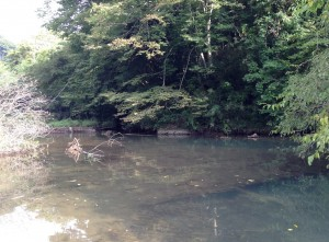 相模湖バス釣り10月2