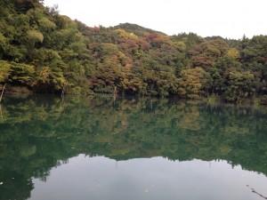相模湖バス釣り11月5