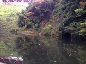 相模湖バス釣り11月1