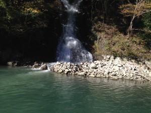 相模湖バス釣り11月霜4