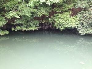 相模湖 ラバージグ05