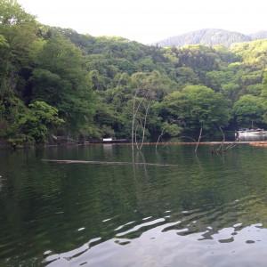 相模湖 本湖 五月