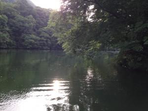 相模湖 6月 バス釣り3