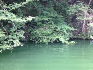 相模湖 バス釣り 8月4