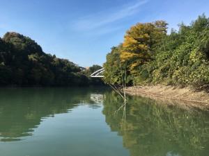 相模湖 秋 バス釣り5